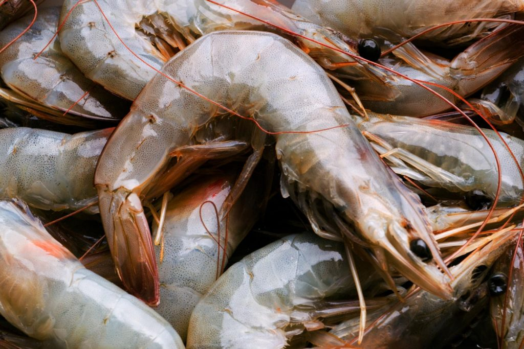 Anti-dumping measures for for types of shrimp in Vietnam, Anti-dumping measures of shrimp in Vietnam