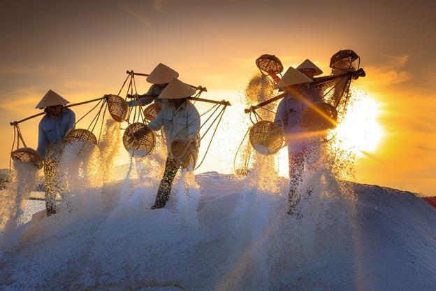 Luật Lao động Việt Nam 2019: Thỏa thuận thử việc không có hợp đồng có trái pháp luật không?