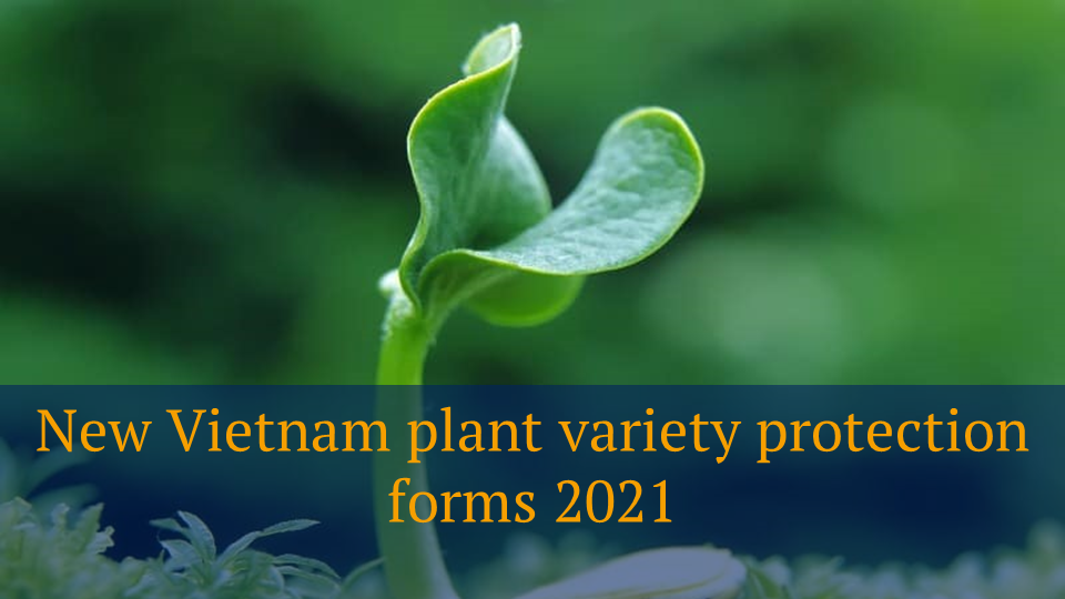 New Vietnam plant variety protection forms 2021