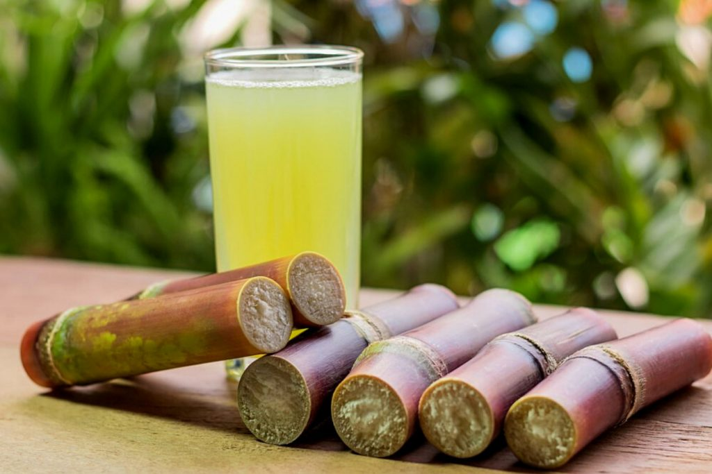 Investigate the application of measures to prevent evasion of trade remedies for cane sugar products